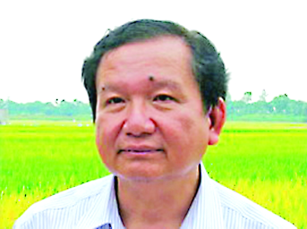 rice farmers face stagnant sales lower prices