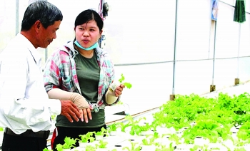 mekong delta agriculture adding value by applying sci tech