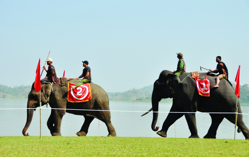 elephant race festival in the central highlands