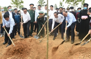 greening vietnam one billion trees to be planted by 2025