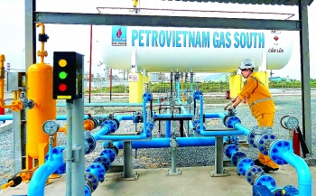 pvgas south a companion of vietnamese families
