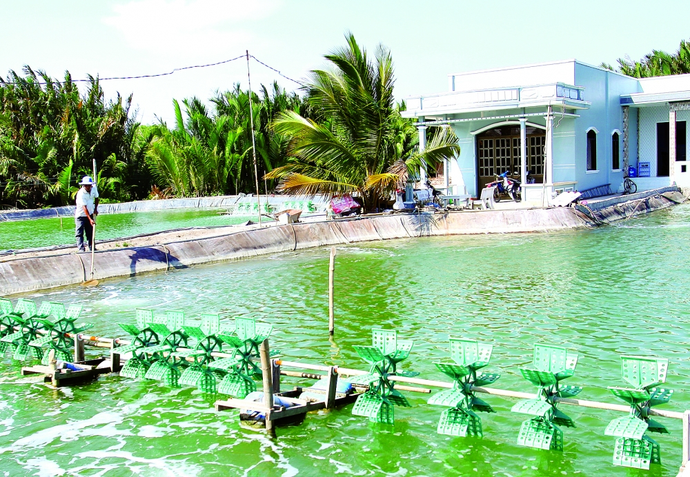 aquaculture fishing for renewable energy investment