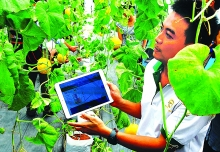 internet of things helps farmers boost improve production
