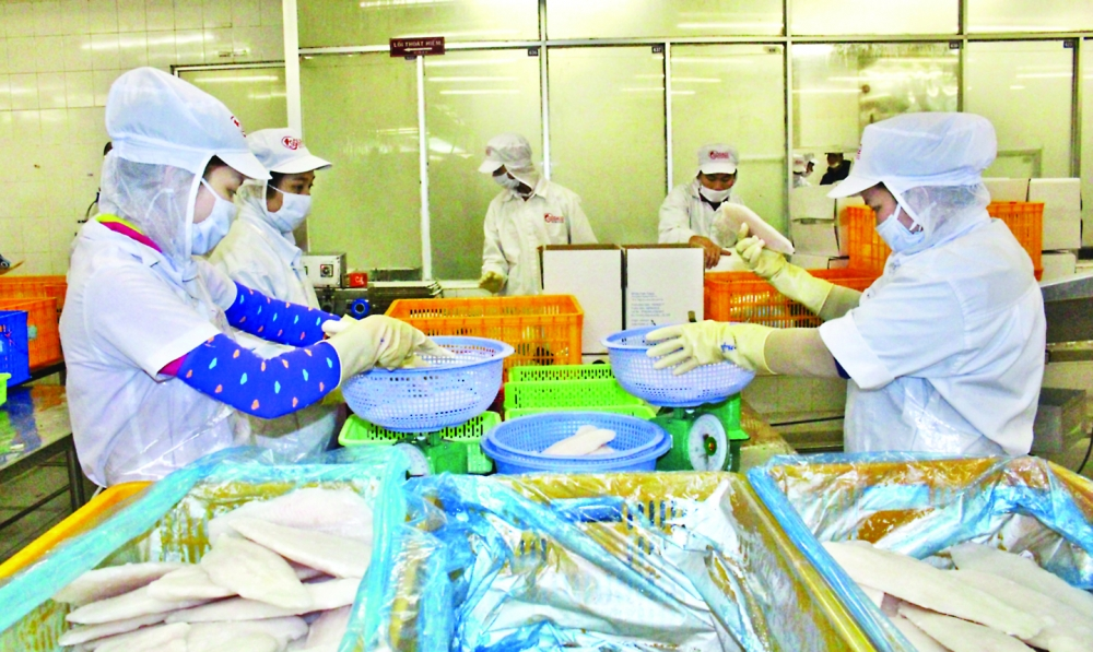 international institutions ease sme credit crunch