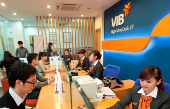analysts steer vietnamese investors to good stock hoarding
