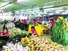 nam dinh industry promotion proves efficient
