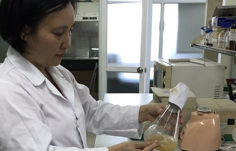 new biological process reduces pulp production damage