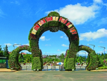 da lat blooms as it prepares for flower festival
