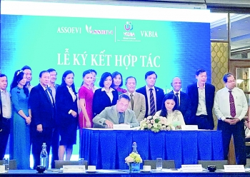 overseas vietnamese businesses mobilize to develop hcmc