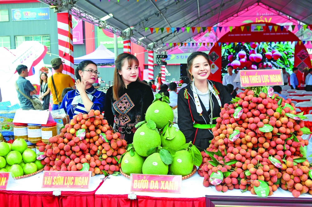 hanoi developing supply chains of safe agricultural produce