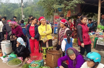 vietnam ilo launch sustainable employment program