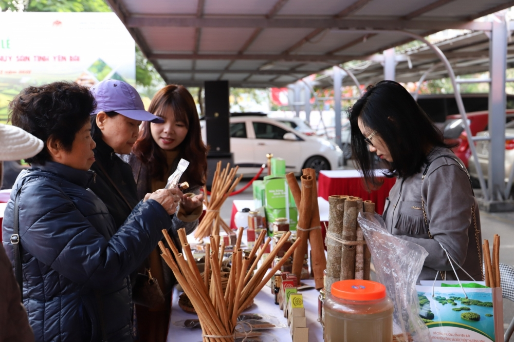 yen bai province encourages investment in agricultural processing