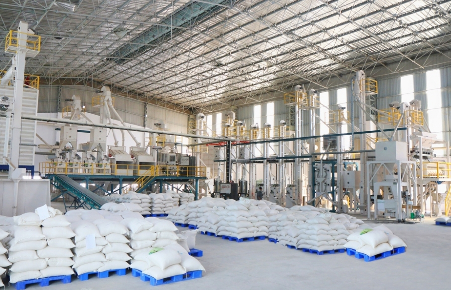 vietnamese rice exports increase 10 percent