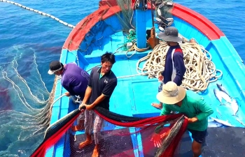 vietnam strives to avoid eu red card over illegal fishing