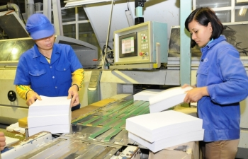 paper industry badly hit by pandemic