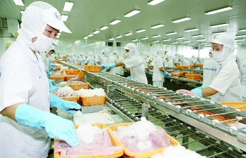 seafood enterprises fishing for new orders