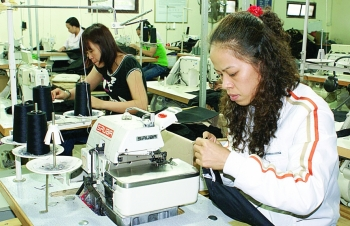 ninh binh province investment boosts rural industrial production