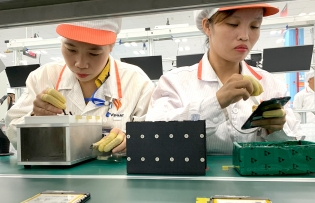 domestic sector expected to foster phone component export resurgence