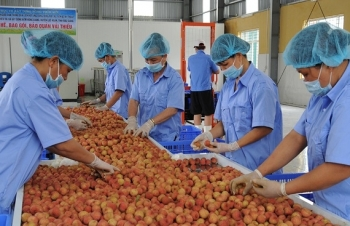 state needs solutions to reduce logistics cost for farm produce