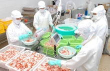 vietnams exporters face tougher chinese food inspection regime