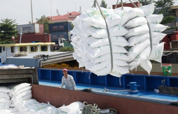growing demand for vietnamese rice in africa