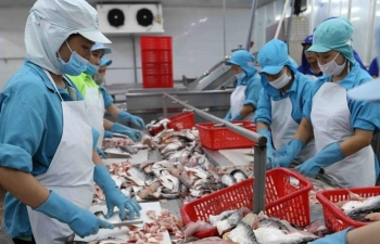 saudi arabia allows resumption of vietnamese seafood imports