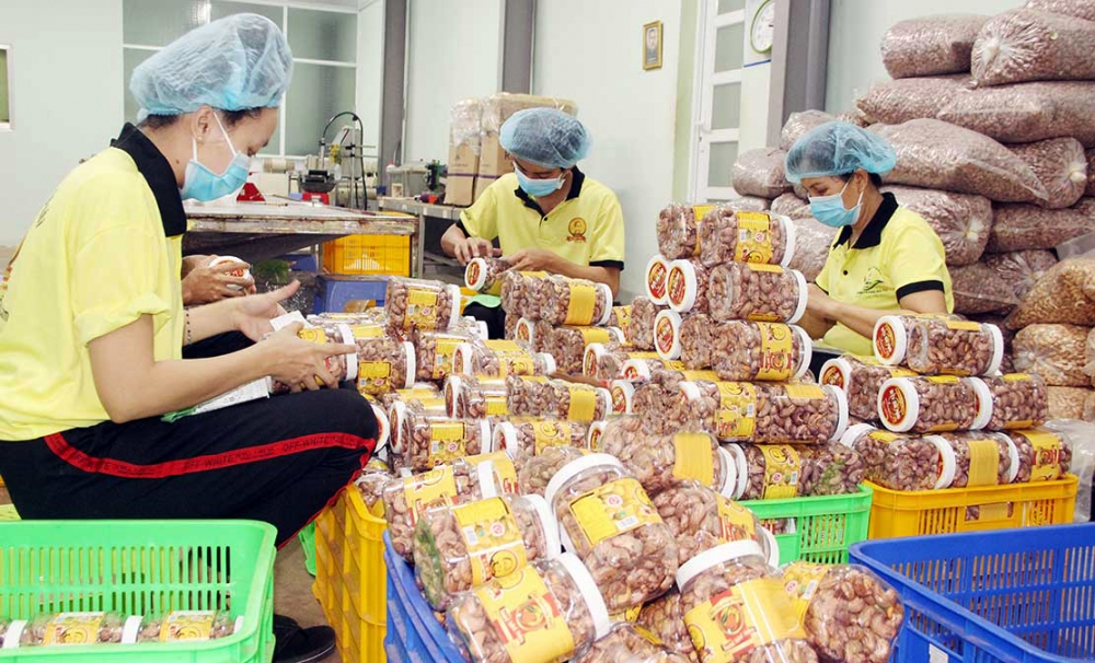 ha tinh province pioneers in logos for rural industrial products