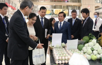 vietnam expects strong growth of japanese investment inflows