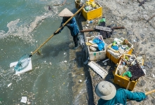 plastic waste battle hampered by lack of standards regulations