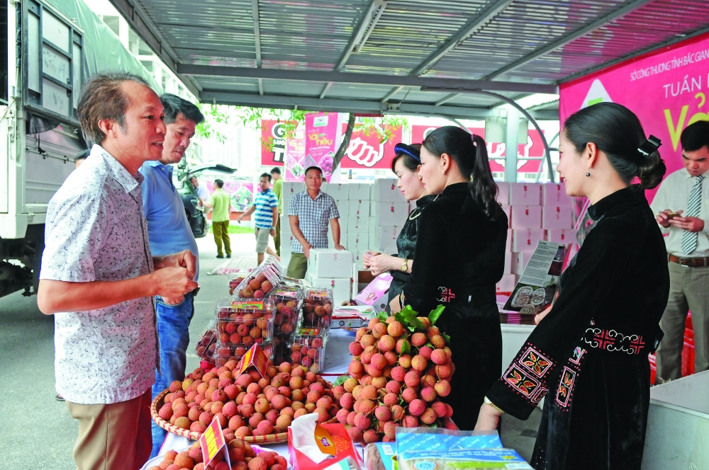 domestic market plays bigger role in gdp growth