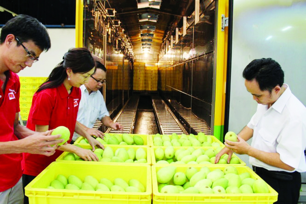 vietnamese trade offices pave way to potential markets