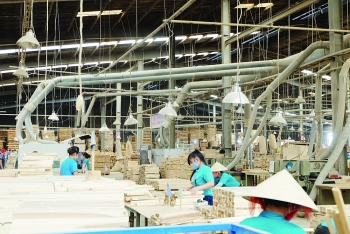 cptpp provides opportunities for timber sector