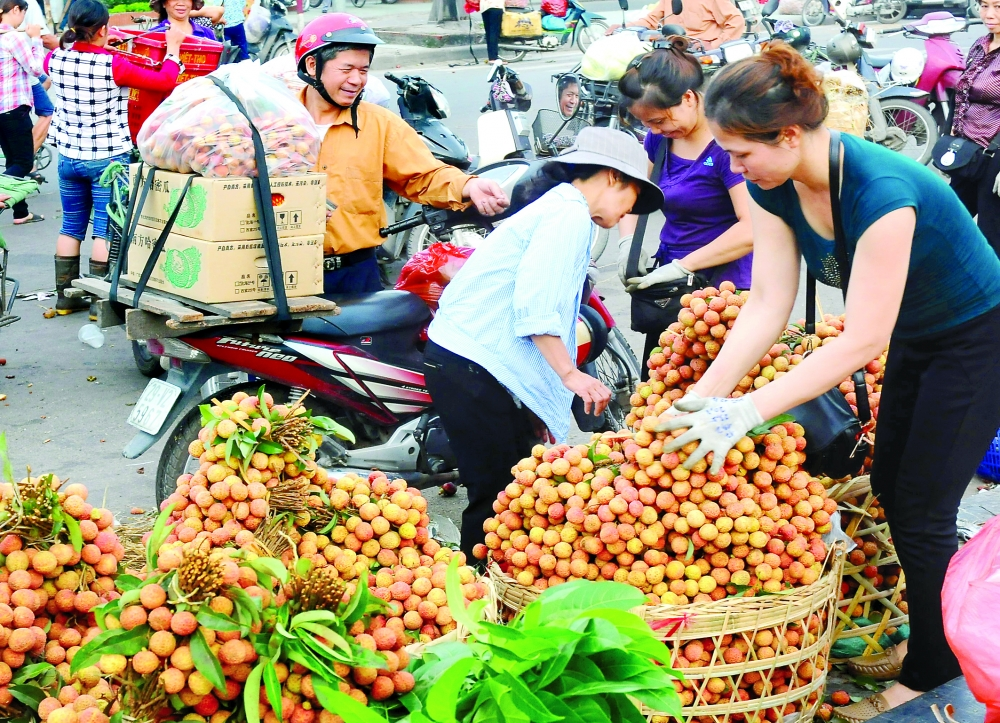 fruit vegetable exports surpass oil