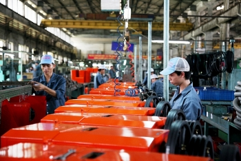 weak links with fdi firms hurt support industries
