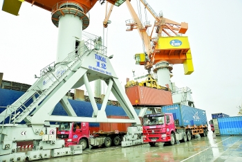 export growth could reach 20 percent in 2018 expert