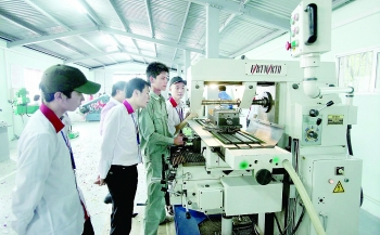 support industry development needs policy boost