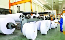paper sector seeks self sufficiency in material
