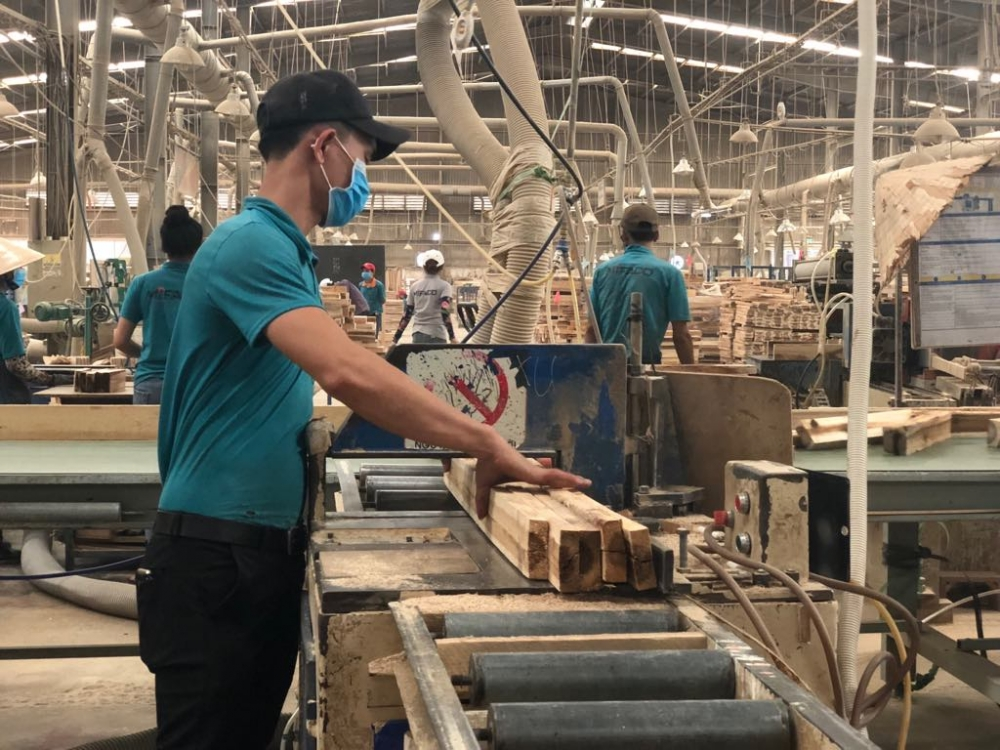 vietnam launches first anti dumping wood sector probe