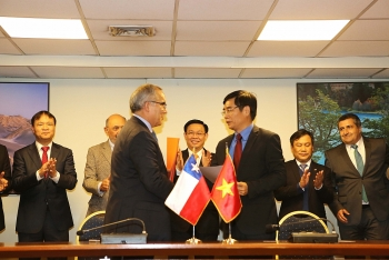 vietnam chile make use of cptpp in market connection