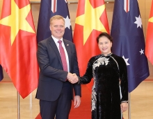 australia vietnam coordination in ratifying cptpp