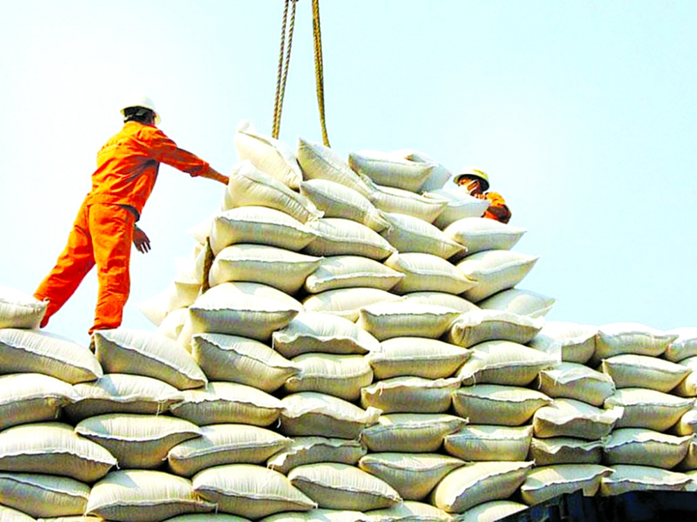 rice exports opportunities in traditional markets