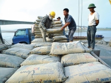 vietnam south africa cement trade ties