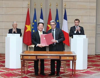 ccifv connecting french firms with vietnamese peers