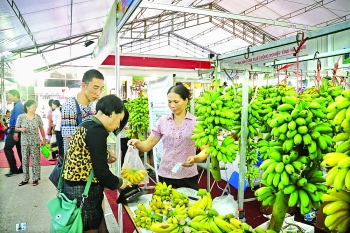 potential new markets for vietnam in mideast africa