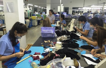 vietnamese exports to us urged to focus on standards