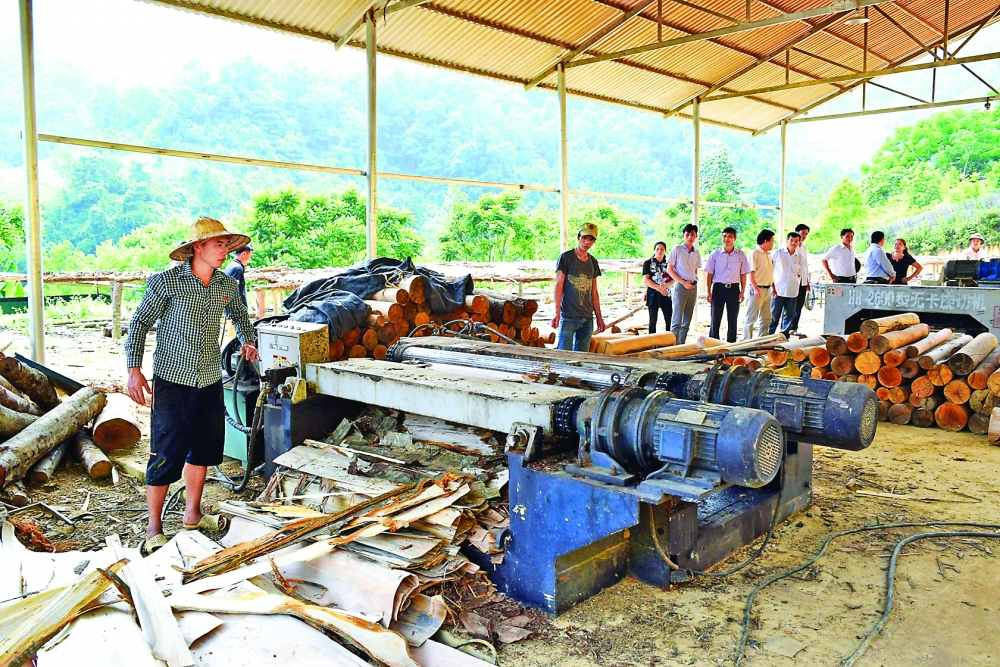 cao bang focuses on developing support industries