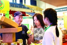 vietnamese firms yet to tap asean economic potential