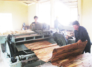 Lao Cai's huge funding for industry promotion