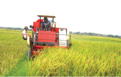 Agricultural restructuring in focus