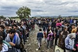 imf urges eu to open jobs market to refugees